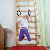 Кольца гимнастические для деревянных ДСК